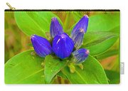 Closed Gentian Closeup In Campground In Saginaw-minnesota Carry-all Pouch