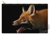 Closeup Portrait Of Red Fox In Profile Isolated On Black  Carry-all Pouch