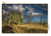 Clouds Over Mesa Verde Carry-all Pouch