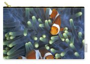 Clown Anemonefish Amphiprion Ocellaris Carry-all Pouch