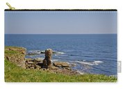 Coast. Seascape 3. Carry-all Pouch