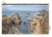 Coastal California Carry-all Pouch