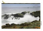 Coastal Expressions Carry-all Pouch