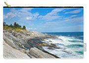 Coastal Maine Carry-all Pouch