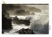 Coastline Oregon Carry-all Pouch