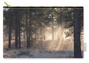Coconino Dawn Carry-all Pouch