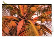 Coconut Sunset Carry-all Pouch