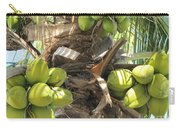 Coconuts Carry-all Pouch