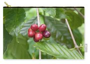 Coffea Coffee Growing In The Balinese Countryside. Carry-all Pouch