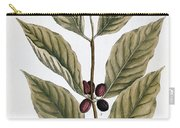 Coffee Plant, 1735 Carry-all Pouch