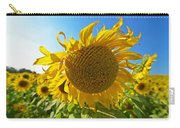 Colby Farms Sunflower Field Newbury Ma Ball Of Fire Carry-all Pouch