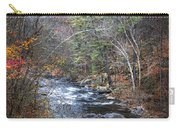 Cold Mountain Stream Carry-all Pouch