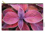 Coleus Red Rosie Carry-all Pouch