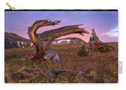 Coloful High Mountain Splendor Carry-all Pouch