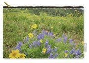 Colorado Color #4 Carry-all Pouch