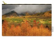Colorado Fall Colors  Carry-all Pouch