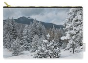 Colorado Foothills Winter Panorama Carry-all Pouch
