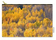 Colorado High Country Autumn Colors Carry-all Pouch