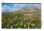 Colorado Late Summer Splendor Carry-all Pouch