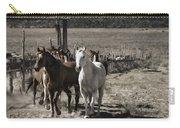 Colorado Run Carry-all Pouch