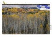 Colorado Splendor Carry-all Pouch