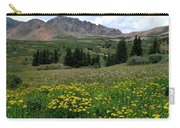 Colorado Wildflower Spectrum Carry-all Pouch