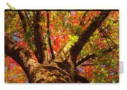 Colorful Autumn Abstract Carry-all Pouch by James BO  Insogna