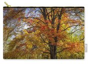 Colorful Autumn Tree In Southwest Michigan By Gun Lake Carry-all Pouch