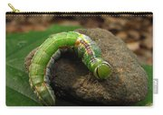 Colorful Caterpillar  Carry-all Pouch