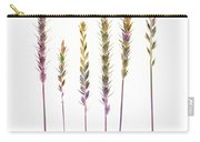 Colorful Grasses  Carry-all Pouch