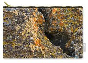 Colorful Lichens Carry-all Pouch
