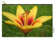 Colorful Lily Dew Drops Carry-all Pouch