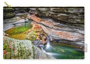Colorful Pool In The Gorge Of Watkins Glen Carry-all Pouch