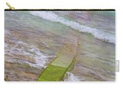 Colorful Seawall Carry-all Pouch