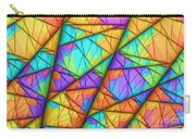 Colorful Slices Carry-all Pouch