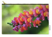 Colorful Snapdragon Carry-all Pouch