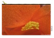 Colors Of The Sun Carry-all Pouch