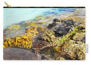 Colourful Sea Life - Fishers Point Carry-all Pouch