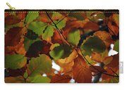 Colours Of Fall II Carry-all Pouch