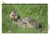 Columbian Ground Squirrels Carry-all Pouch