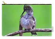 Combing His Feathers - Ruby-throated Hummingbird Carry-all Pouch