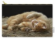 Comfy Cat Carry-all Pouch