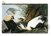 Common Eider, Eider Duck Carry-all Pouch