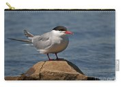 Common Tern... Carry-all Pouch by Nina Stavlund