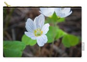 Common Wood Sorrel Carry-all Pouch