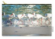 Companions On Coquina Beach Carry-all Pouch