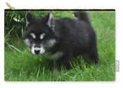 Concern Expressed On The Face Of An Alusky Pup Carry-all Pouch