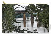 Congaree River Glimpse Carry-all Pouch
