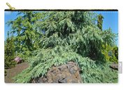 Conifer Tree Art Prints Pine Trees Botanical Nature Baslee Troutman Carry-all Pouch