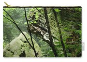 Conkle's Hollow Stone Arch Carry-all Pouch